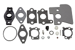825293 Briggs and Stratton Kit-Carb Overhaul