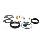 Briggs & Stratton Kit-Carb Overhaul 394698