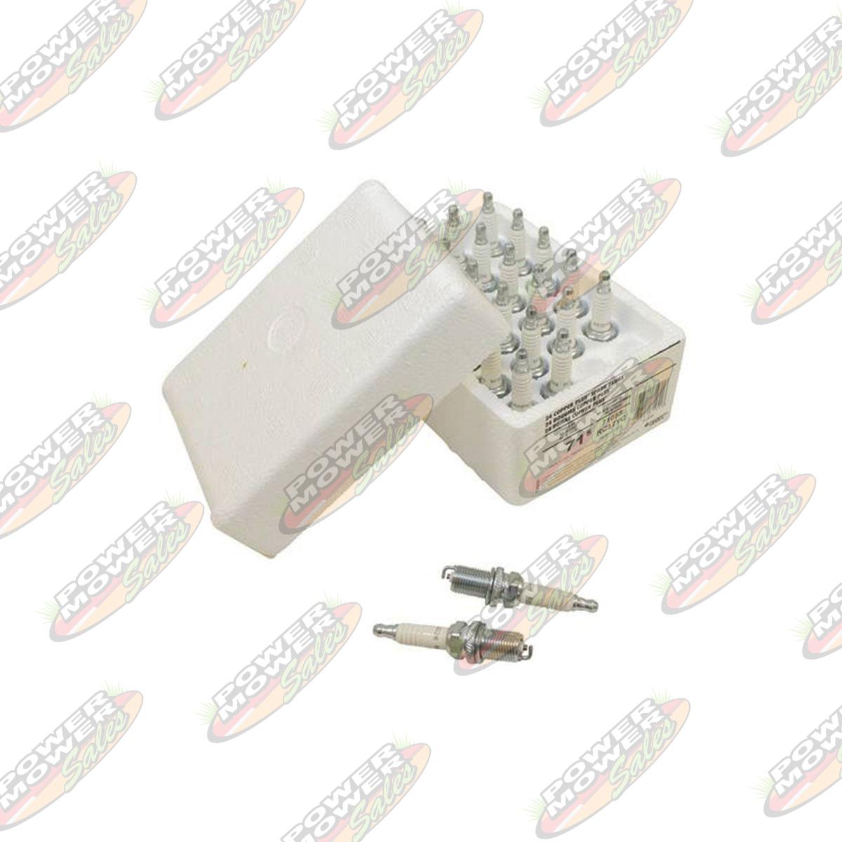 Spark Plug Shop Pack / Champion 71S/RC12YC | Power Mower Sales