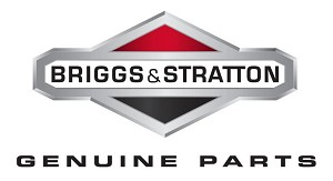 Briggs & Stratton Briggs and Startton Key-Flywheel 843837